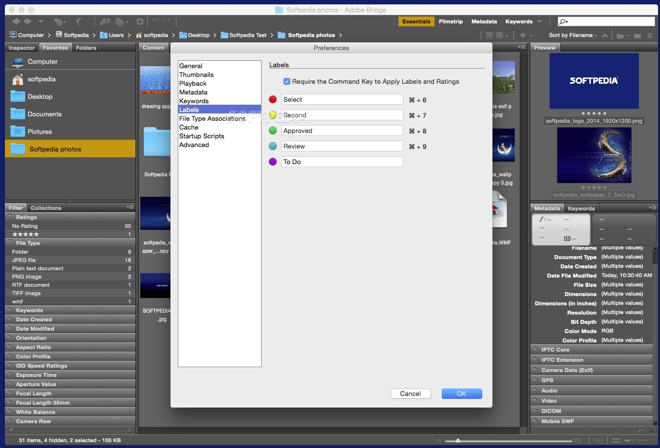how to use adobe bridge cc