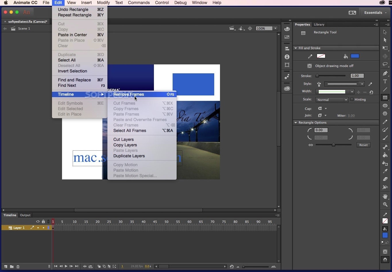 Adobe Animate Mac CC 2018 19 2 1 - Download