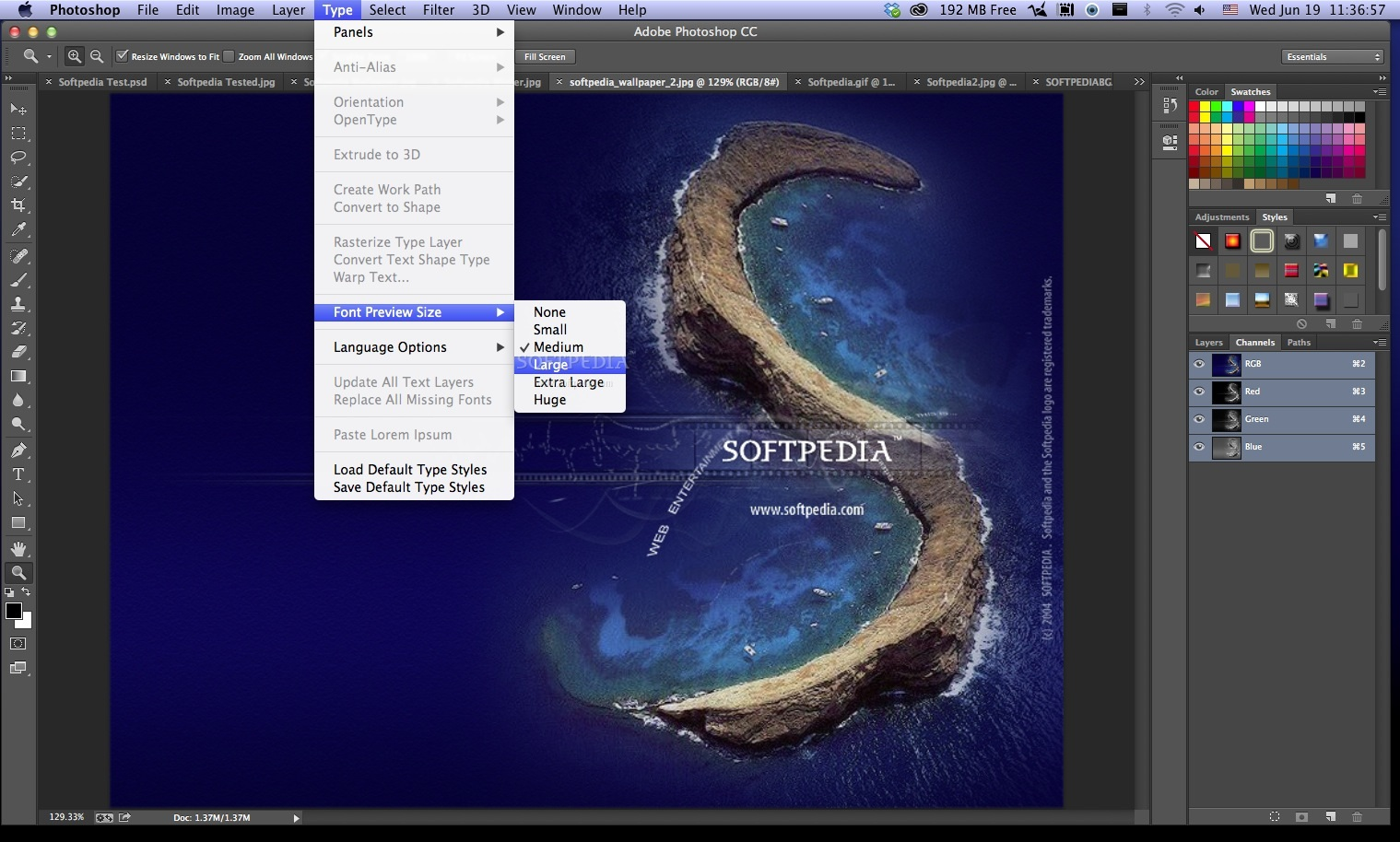 Adobe Photoshop screenshot 8