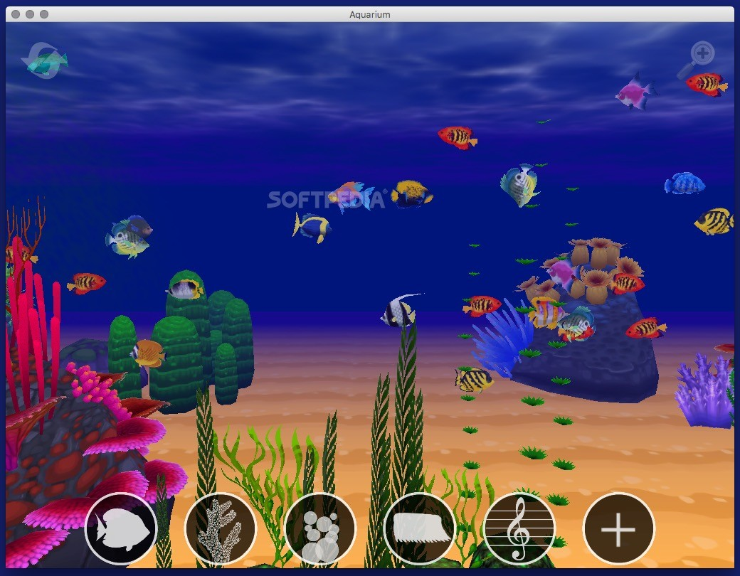 Vr aquarium game free download aquarium download mac for Pet fish games