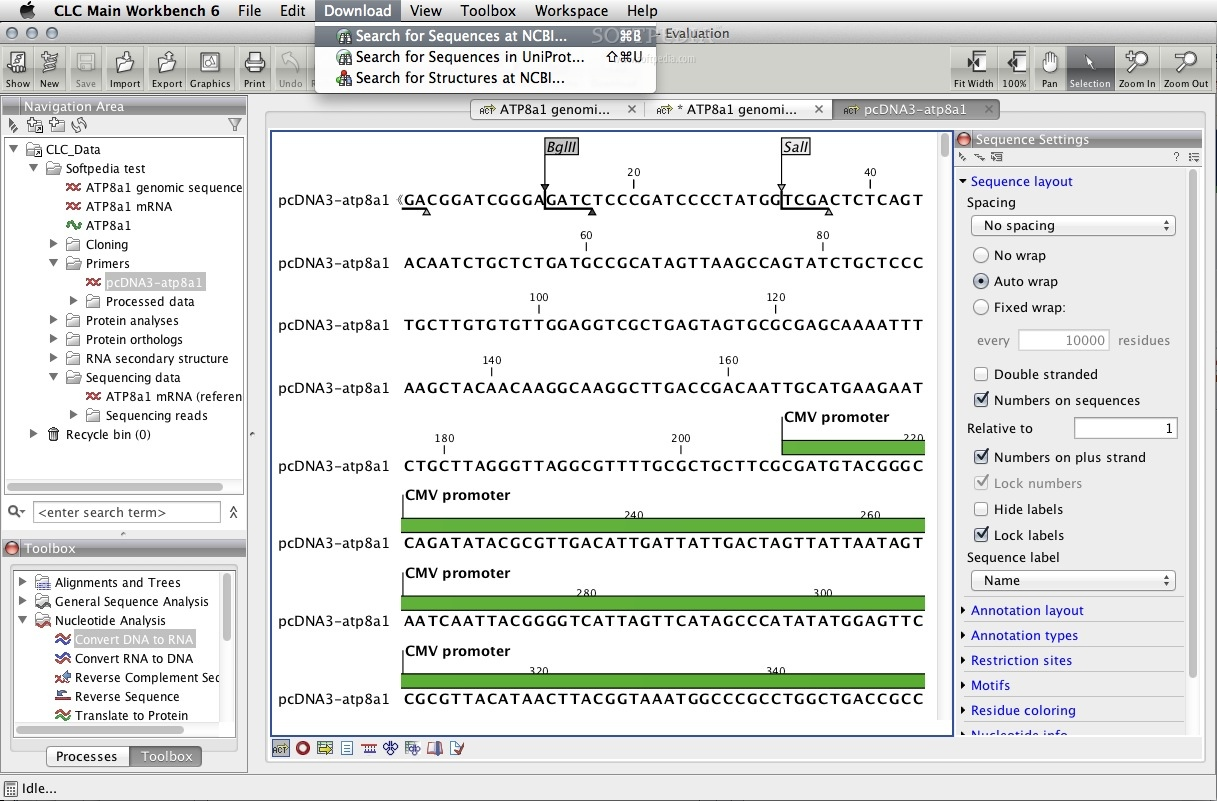 CLC Main Workbench screenshot 3 - You can also search and download sequences from NCBI or UniPort.