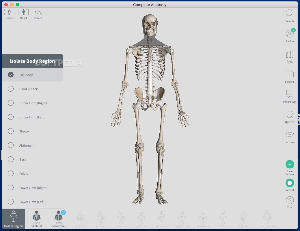 Complete Anatomy 2020 Mac 5 0 4 - Download