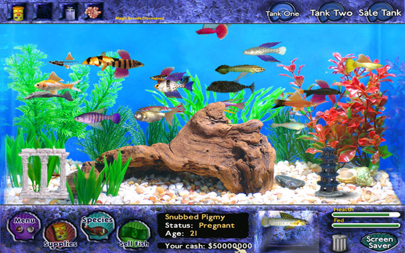 Fish tycoon download mac for Fish tycoon 2