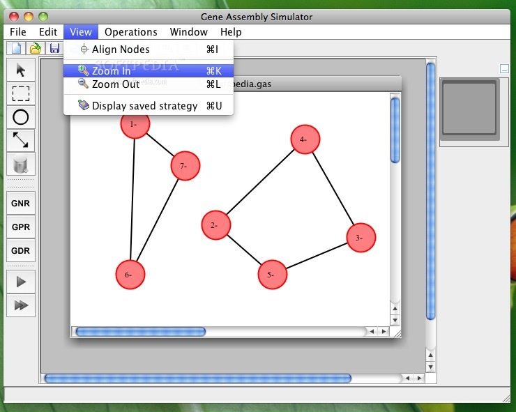 Gene Assembly Simulator screenshot 2