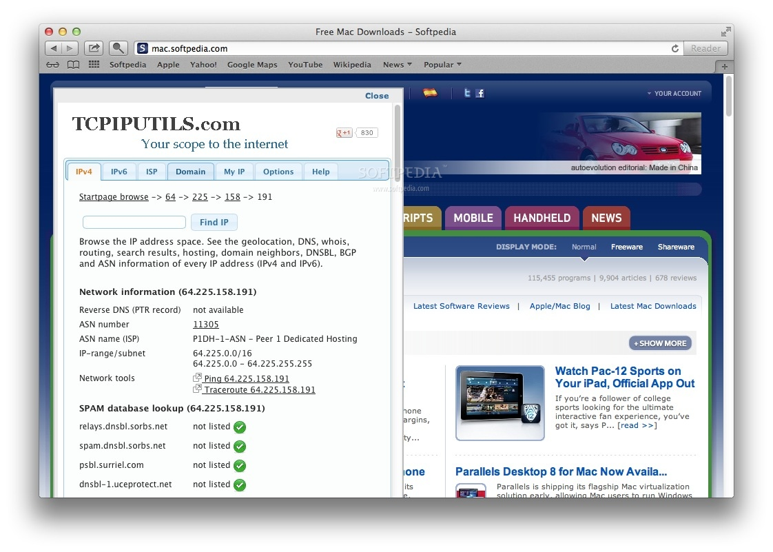 IP Address and Domain Information screenshot 1