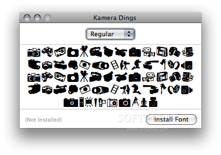 Kamera Dings screenshot 1 - The font before installing it.