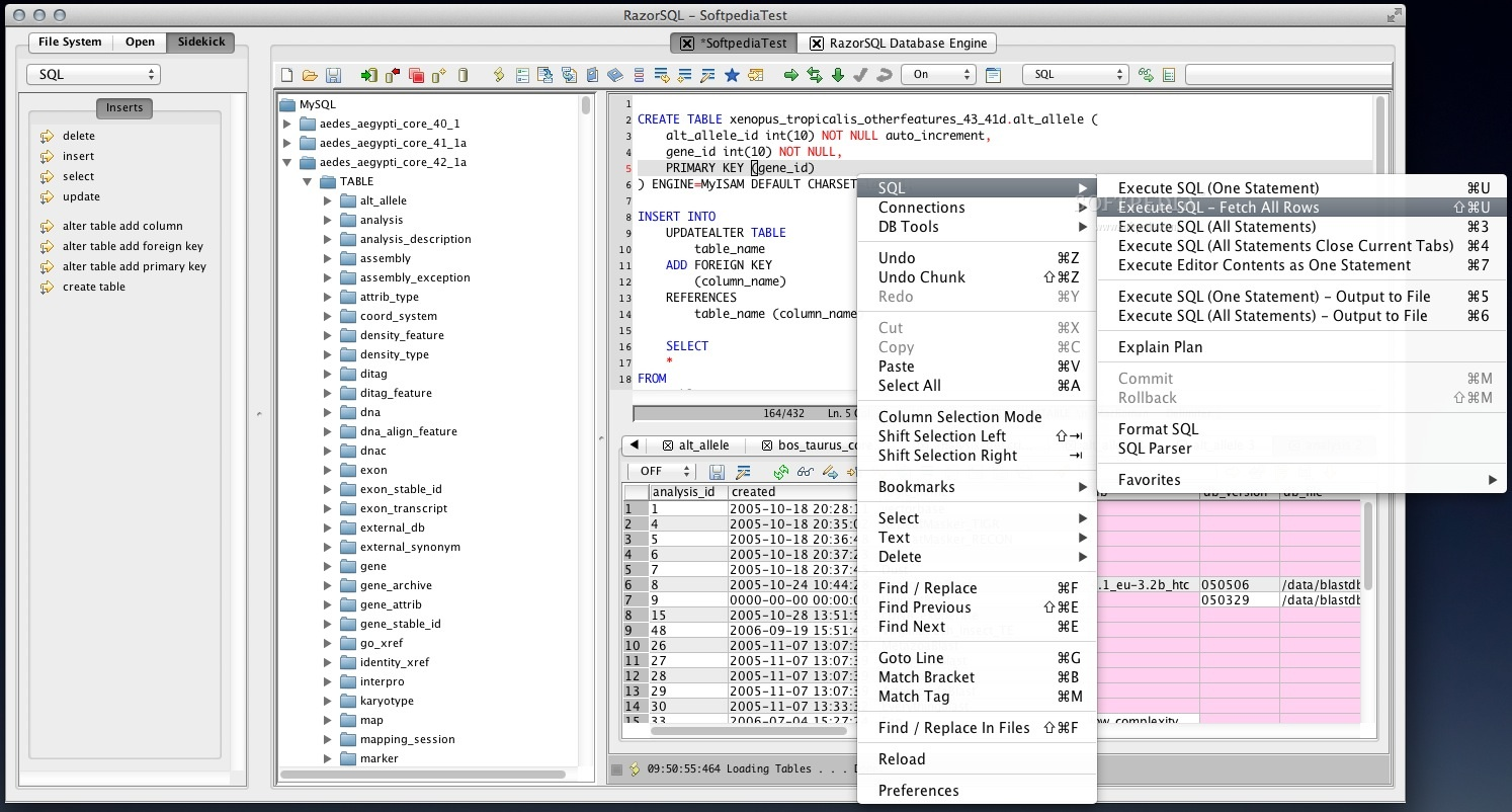 RazorSQL screenshot 3 - From the SQL editor contextual menu, you can speedily execute the selected SQL statements.