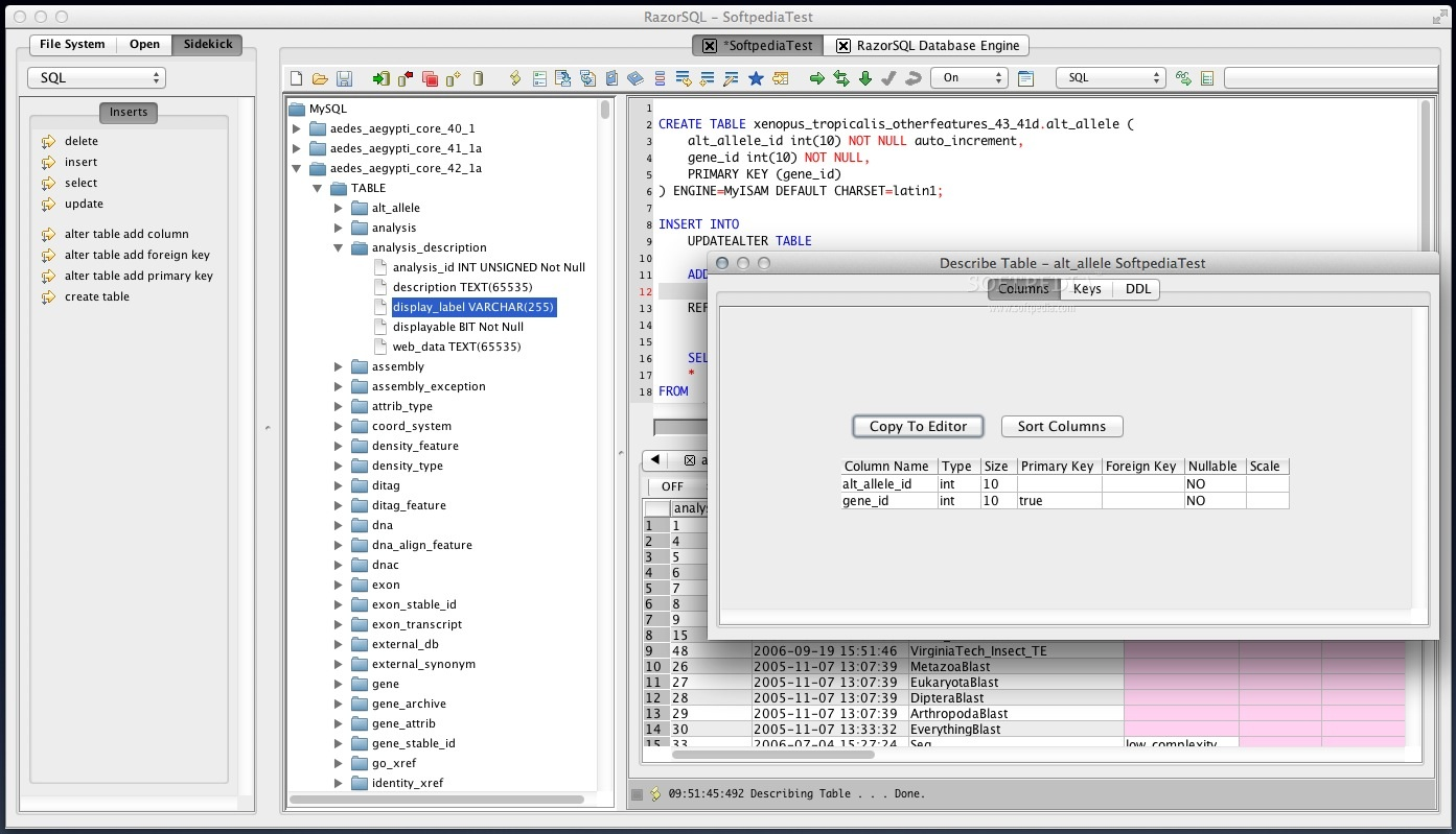 RazorSQL screenshot 4