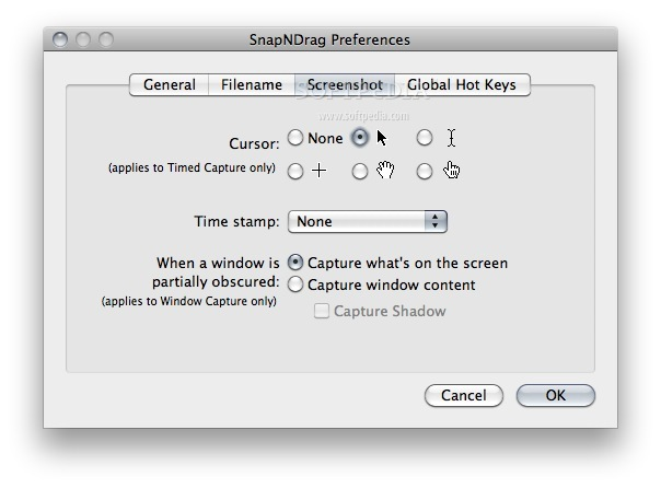 SnapNDrag screenshot 4 - Here you can change your cursor type and the Time stamp.