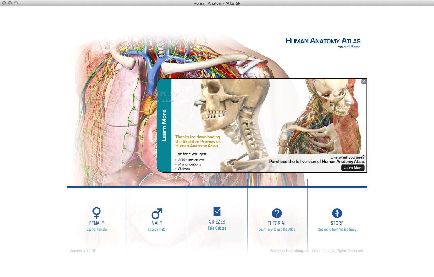 Download Human Anatomy Atlas Mac 2017.2.12