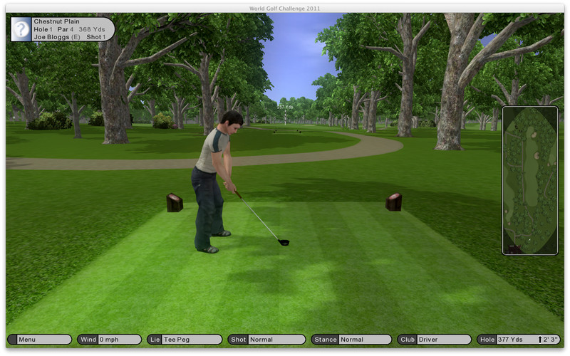 World Challenge Golf 2011 screenshot 1