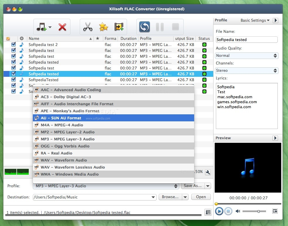 Xilisoft FLAC Converter screenshot 4 - Profile changes can be made in this panel.