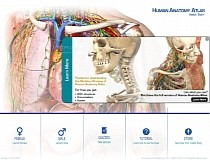 Human Anatomy Atlas Mac 2019 1 12 - Download